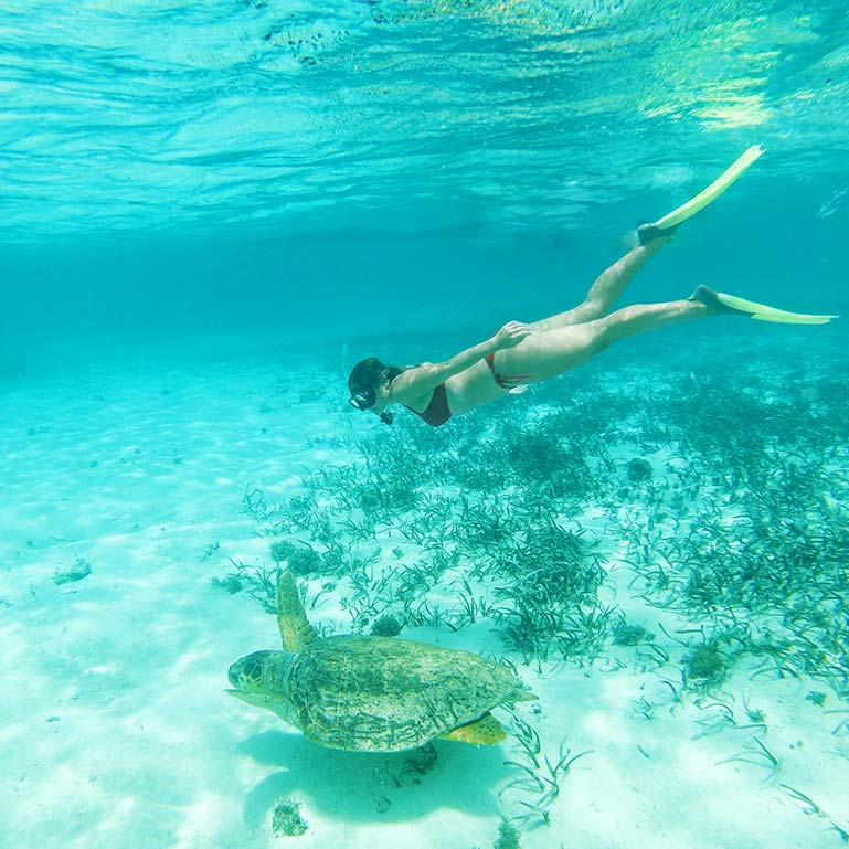 Belize all inclusive vacation packages