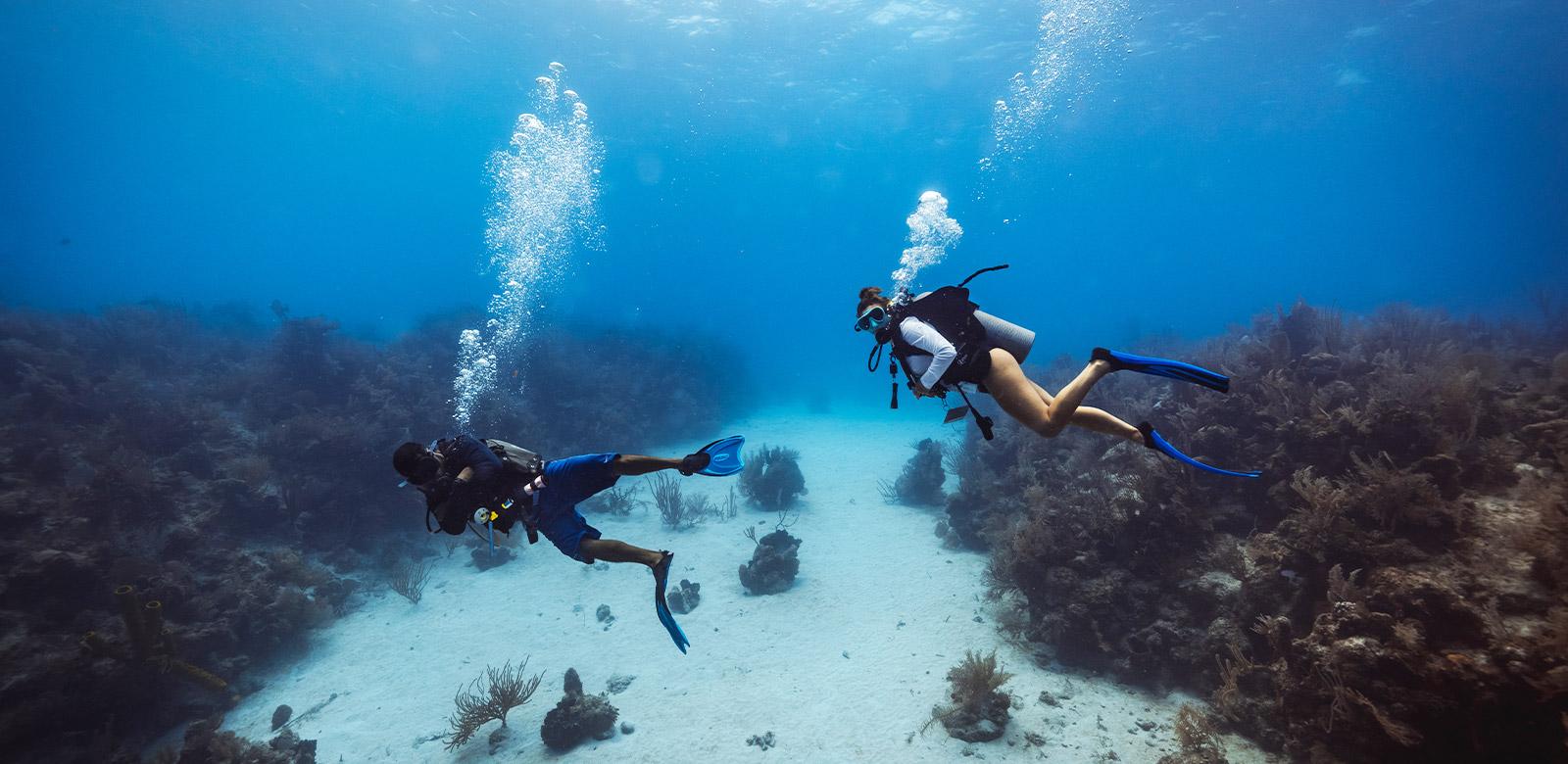 Belize Scuba Diving Tours