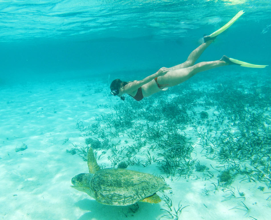 Belize vacation package add-ons
