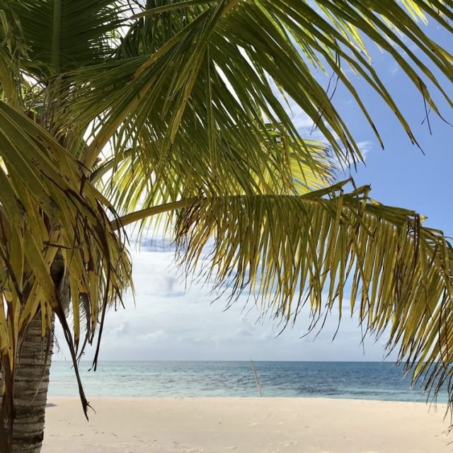 Glovers Reef Belize - beach view