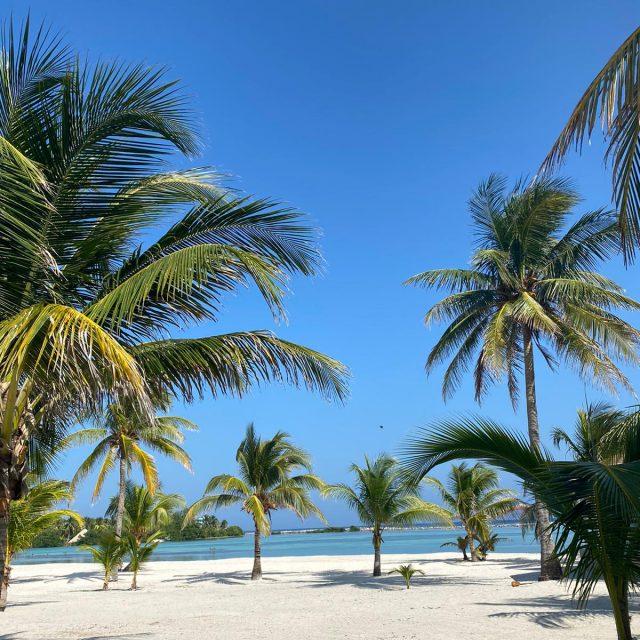 Manta Island Resort - Beachfront